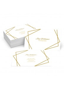 Compound Shapes Business Card (1000 cards)