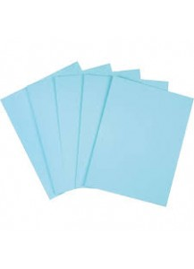Copy Paper - Pastel Blue (500 Sheets/Ream)